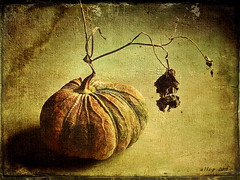 The Ugly Pumpkin (ulli_p) Tags: light stilllife food art texture nature colors rural photoshop pumpkin thailand asia southeastasia colours best textured isan photomix likeapainting artisticexpression aworkofart flickraward texturedphoto ruralthailand earthasia thebestshot awardtree tatot totallythailand artofimages magicunicornmasterpiece exoticimage mygearandme canoneoskissx5
