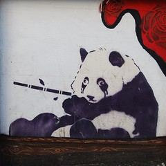 Pandy! (Sa//y) Tags: streetart art bristol graffiti stencil panda spraycan