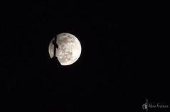 DSCF8127 (Alexia Estvez) Tags: grancanaria noche eclipse luna cruz fujifilm silueta galdar fotografianocturna s2500hd fujifilms2500hd alexiaestvez