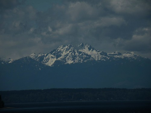 the olympics from steilacoom