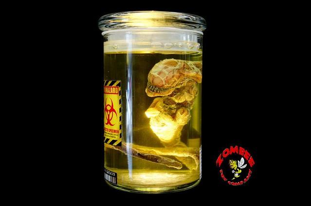 zombee toy - 1:1 瓶中異形樣本