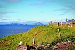 View Of The Blasket Islands...HFF (dorameulman) Tags: ireland beautiful fence landscape kerry dinglepeninsula ringofkerry blasketislands fencedfriday dorameulman