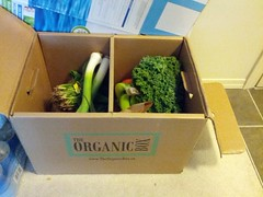Organic box (GPrime83) Tags: orange apple mushroom tomato broccoli banana potato eggs tangelo leek kale raisin spinach theorganicbox