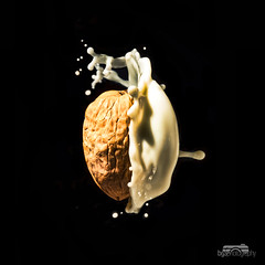 The dark side of the nut (Explored) (bgspix) Tags: food fruit canon fun photography milk sunday nuts drop lait nut splash milky darkside noix strobist sundayphotography