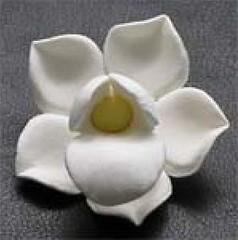 Small White Orchid No wire 3cm (sweetinspirationsaustralia) Tags: cupcaketoppers