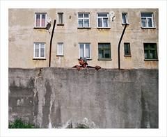 ruins of communist estates 3 (Ioana Moldovan) Tags: people color children ruins photojournalism communism collonies