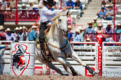 Barrel Racer (John C. House) Tags: horses horse nikon rodeo cowgirl cheyenne barrelracing frontierdays everydaymiracles d700 johnchouse