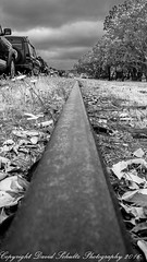 Follow the Straight and Narrow (dschultz742) Tags: 07162016 d810 mbcc mountbakercameraclub scavengerhunt blackandwhite bw monochrome converginglines nikon nikkor nikonafs283003556gedvr