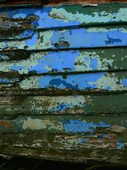 Of war I'm hearing rumours (steverichard) Tags: boat hull colours colors paint peeling old decay wooden wood abandoned abandonment blue blau bleu azul bateau wellspring kirkcudbright steverichard image photo picture foto blueandgreen green