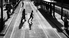 Crossing Tramway (Wilson Au   ) Tags: sheungwan hongkong   blackandwhite monochrome silhouette backlight hongkongtramways fujifilm xe2 xf1855mmf284rlmois pedestrian