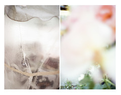 (mckinnon.james) Tags: contax berlin rose plastic diptych verticle selected paris