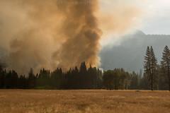 feel the burn Yosemite_8103965 (steve bond Photog) Tags: yosemitenationalpark yosemite california fire controlledburn halfdome smoke trees