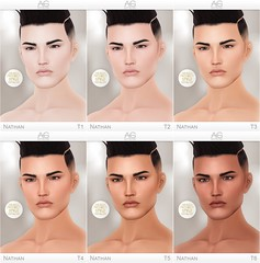 Nathan Skin (Men Only Monthly) (Avi-Glam (very busy in RL)) Tags: men only monthly skin male nathan tmp mesh head aviglam ag