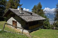 Dans le Grand Bisse de Vex (CH) (TICHAT10) Tags: grandbissedevex mayensdesion suisse veysonnaz chalets ciel nuages lesmayensdesion valais ch nwn