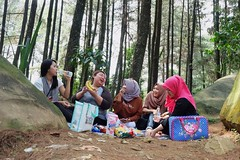 #ourtrip #classmate #pinustrees #friendship (hasyyatiarifah) Tags: ourtrip classmate pinustrees friendship