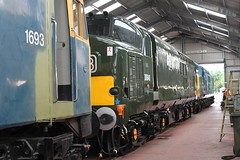 IMG_8410 (D9022) Tags: gloucesterwarwickshirerailway toddington 47376 freightliner gloucestershire 7903 d6948 37248 37215 35006 peninsular oriental sn co royal merchant navy class 4270 foremarke hall d8137 1693 d6036