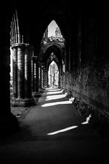 cloisters (pamelaadam) Tags: bw geolat54488344 geo:lon=0607894 whitby engerlandshire whitbyabbey abbey kirk building faith spirituality august summer 2016 holiday2016 people lurkation digital fotolog thebiggestgroup