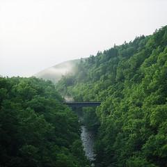 Bridge (hisaya katagami) Tags: hasselblad500cm 120film fujifilm pro400h nature green photography river