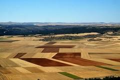 Campos de Soria (ameliapardo) Tags: soria campo agricultura