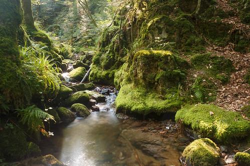 Cascades Edelfrauengrab à Ottenhöfen