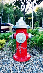 Fire hydrant (nikitalesnik) Tags: phone iphone6 iphone parkinglot rocks playground park firehydrant hydrant fire water red