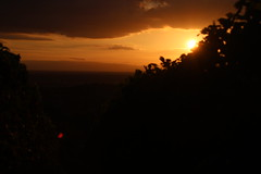 Vines Blackforest (jakoboberle) Tags: landscape landschaft blackforest schwarzwald vines reben germany deutschland german deutsch sky himmel orange black sunset sunrise sonnenuntergang sun sonne summer sommer