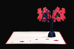 Pop Up Tree Card (Daniel E Lee) Tags: cards 3d popup popupcard creative art boat ship sailship love hate signpost bicycle tree colorful cherryblossom nature ferriswheel vibrant hongkong travel souvaneirs canon6d6dfullframeprimeprimelensbokehbokehliciousnaturallightambientlightphotosbydleephotographyphotoshoplightroomcanon100mmf28lis 100l 100mm