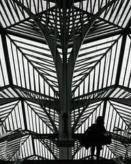 Oriente (damonjah) Tags: oriente station calatrava lisbon portugal street streetphotography streetlife urban graphic lines bw black white monochrome damonjah damonjahcom