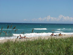 Public Beach (Terry Hassan) Tags: usa florida palmbeach beach sand sea ocean sky water bather hedge