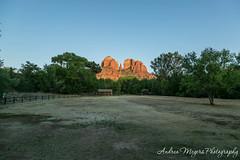 Cathedral Rock at sunset (Andrea Meyers) Tags: sedona arizona coconino cathedralrock sunset