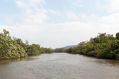 (GenJapan1986) Tags: travel sky japan river landscape island  okinawa    25mm iriomoteisland     2013  nikond90 zf2  distagont225