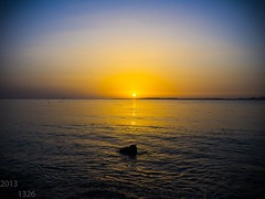 Diving in Sharm el Sheikh (maxwell1326maxen) Tags: travel sea vacation sexy love tourism beach sports water beautiful sunshine animals lumix boat action redsea egypt sharmelsheikh scuba resort panasonic explore scubadiving luxury adrenaline gh2 waterporn sunshinedivers maxwellmaxen
