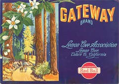 Gateway (Jon Williamson) Tags: food history vintage advertising label ad advertisement crate vintascope