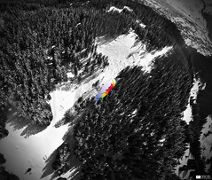 Over the Rainbow (Daniel Wildi Photography) Tags: wood winter snow sports nature forest landscape switzerland fly flying flight wing first blacklight grindelwald paragliding glider paraglider uturn berneseoberland colorkey 2013 selectivecolors danielwildiphotography