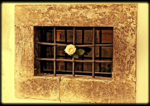 Abruzzo: Prezza