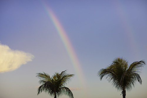 Bal Harbour Nature | Double Rainbow | Double Palm Tree | 130512-9736-jikatu