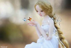 Miracles in the woods (*TatianaB*) Tags: art marina ed doll bjd resin enchanted marinabychkova bychkova resinenchanteddoll