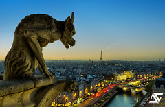 Watch over Paris (A.G. Photographe) Tags: sunset paris france seine french nikon eiffeltower notredame gargoyle toureiffel ag nikkor pniche franais hdr gargouille parisian anto xiii parisien 2470 d700 antoxiii agphotographe