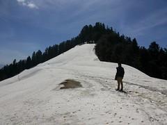 Himalayan Drifters (ashi_84) Tags: mata ashish himalayan devi chauhan shikari drifters