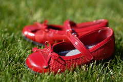 16_52nd.3 No Place Like... (The Pack) Tags: red green grass spring shoes 85mmf14 52weeksfornotsdogs purchasedfor399andsoontobedonatedtogoodwill