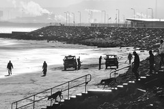 Leisure, Work and Industry (Lee Summerson) Tags: sea beach dogs work walking industrial pollution leisure coal landrover seatoncarew hartlepool seacoal