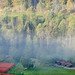 Black Forest fog