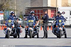 205 PPMSC - North Charleston Police (rivarix) Tags: cops lawenforcement policeman policeofficer motorofficer harleydavidsonroadking palmettopolicemotorcycleskillscompetition harleydavidsonpolicemotorcycle northcharlestonsouthcarolina policerodeo northcharlestonpolicedepartment