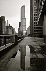 Trump Tower, Chicago (Seth Oliver Photographic Art) Tags: blackandwhite chicago reflections landscapes iso200 illinois nikon midwest skyscrapers cityscapes trumptower pinoy downtownchicago circularpolarizer urbanscapes secondcity magnificentmile windycity chicagoist cityskylines d90 wetreflections handheldshot monochromeconversion urbanskylines nearnorthside cityofbigshoulders aperturef80 manualmodeexposure setholiver1 1024mmtamronuwalens 1125secondexposure