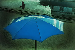 The Blue Umbrella (jta1950) Tags: city reflection bird texture beach water umbrella sand montreal oldmontreal oldport vignette vieuxmontreal blueumbrella sunsinger lenabemanna