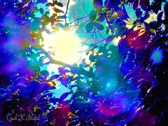 Into the rainbow (gailpiland) Tags: light tree colorful neon branches saturation hypothetical thegalaxy photodhop flickraward thebestofday gailpiland netartii flickrstruereflection1 rememberthatmomentlevel1 rememberthatmomentl1