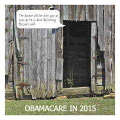 THE DOCTOR WILL BE WITH YOU IN JUST A FEW MINUTES . . . (NC Cigany) Tags: usa fun funny politics humor obama 9926 obamacare