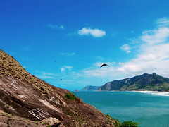 L do Pontal... (Leonardo Martins) Tags: ocean blue sea brazil verde green praia beach rio azul stone brasil riodejaneiro mar sand chair bresil areia brasilien exotic tropical vulture pedra pontal blackvulture oceano cadeira brsil recreio urubu sudeste regiosudeste