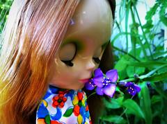 the sweet smell of spring (TuSabesBlythe) Tags: parco doll nimbus skipper limited limitededition bl nimbus2000 nimbusboom