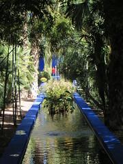 Marrakesh Majorelle_9806 (JespervdBerg) Tags: holiday spring 2016 africa northafrican tamazight amazigh arab arabic moroccanstyle moroccan morocco maroc marocain marokkaans marokko marrakech marrakesh majorelle